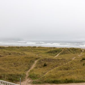 A foggy day on the coast